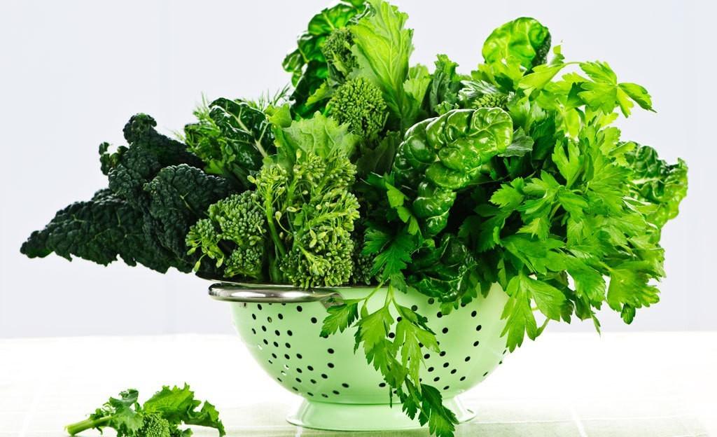 حفظ الخضروات الورقية