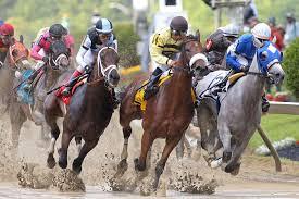 مصطفى شعبان يفوز في سباق الخيول