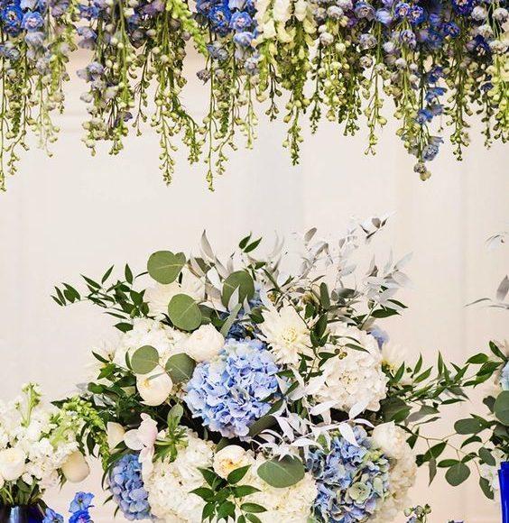 ورد ازرق للعروس