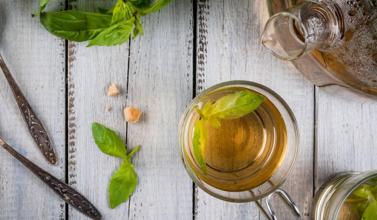 فوائد مشروب الريحان