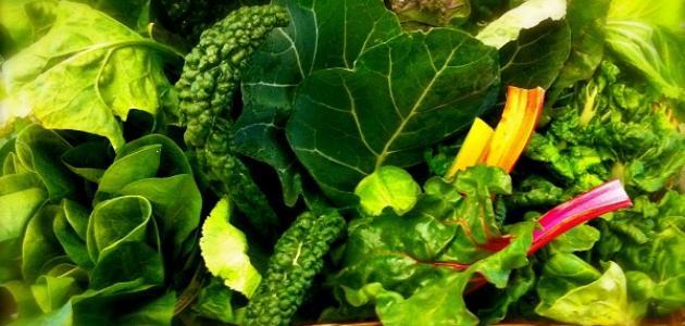 دور الخضروات الورقية في خفض نسبة الكوليسترول بالجسم