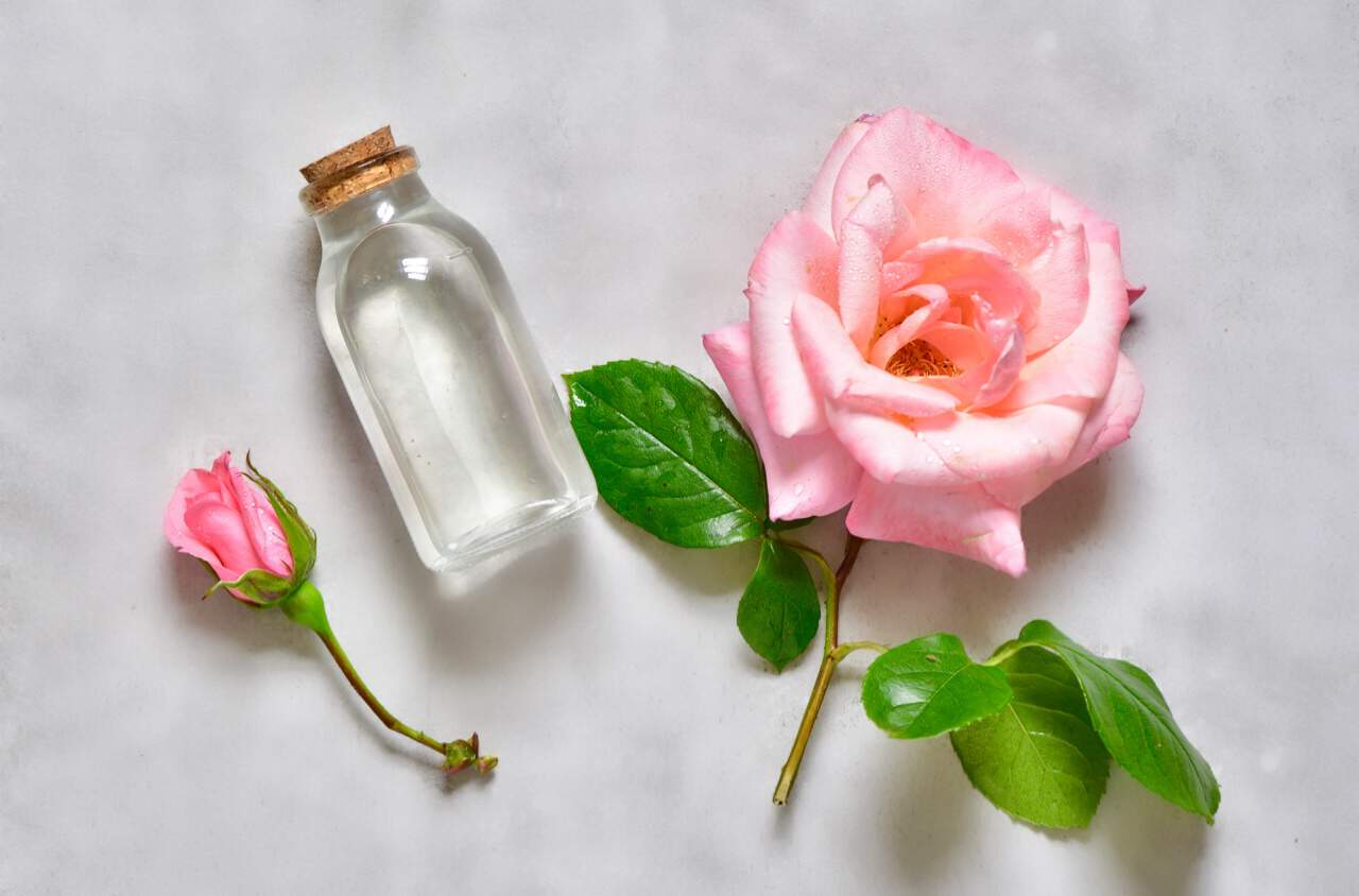 فوائد ماء الورد للوجه والشعر